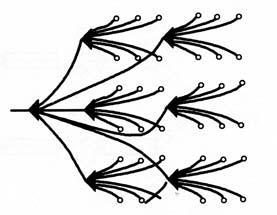 图5-14并簇联法