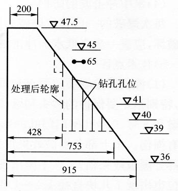 图17-2坡脚预处理钻孔布置图(尺寸单位:m