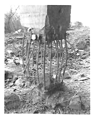 图2-7顶部有约束墩柱爆后钢筋骨架