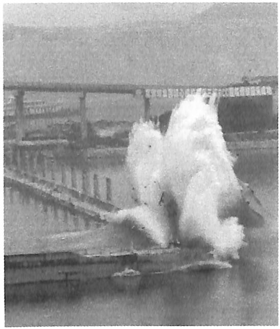 图8.1三峡工程三期上游RCC围堰拆除 钻爆炸碎瞬间新华社记者摄
