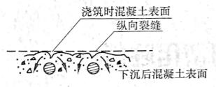 图11-1塑性下沉裂缝