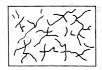 图11-2板的塑性收缩裂缝